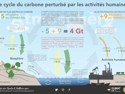 Cycle du carbone.v.3